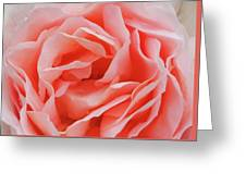 Centre - Rose Greeting Card