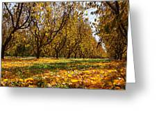Ceres Orchard - Fall Greeting Card