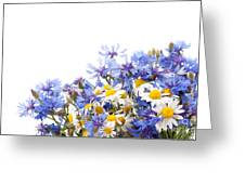Chamomile And Cornflower Mix Greeting Card