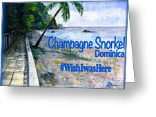 Champagne Snorkel Dominica Shirt Greeting Card