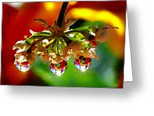 Chandelier From The Rain Drops Greeting Card