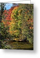 Changing Colours Of The Fall Greeting Card