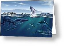 Channel Islands Whales Greeting Card