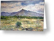 Chapmans Peak Cape Peninsula South Africa Greeting Card