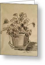 Charcoal Planter Greeting Card