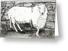 Charcoal Sheep Greeting Card