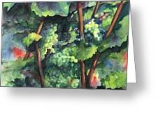 Chardonnay Dans L'ombre Greeting Card