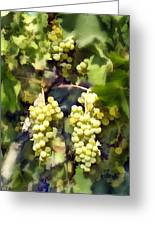 Chardonnay Greeting Card