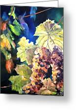 Chardonnay Vines Greeting Card
