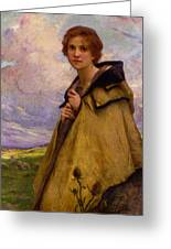 Charles Amablelenoir Labergere Large Greeting Card