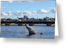 Charles River Boston Ma Crossing The Charles Citgo Sign Mass Ave Bridge Greeting Card
