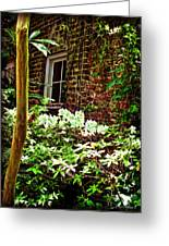 Charleston Alley Window Greeting Card