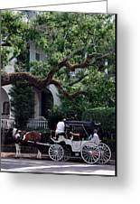 Charleston Buggy Ride Greeting Card