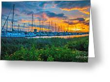 Charleston Marina Greeting Card