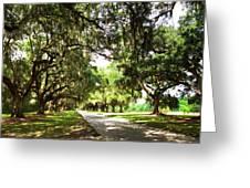Charleston Oaks 3 Greeting Card