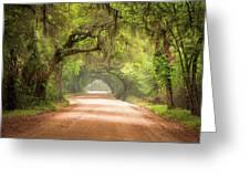 Charleston Sc Edisto Island Dirt Road - The Deep South Greeting Card