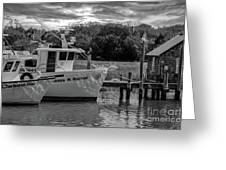 Charleston Star In Monochrome Greeting Card