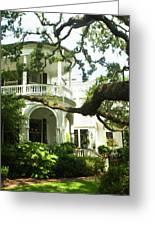 Charleston Style 7 Greeting Card