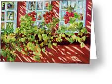 Charleston Window Boxes Greeting Card