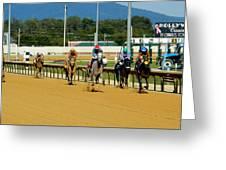 Charlestown Races Greeting Card