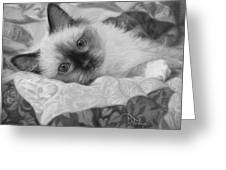 Charming - Black And White Greeting Card