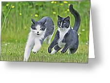 Chase Me Greeting Card