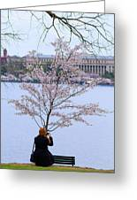 Chasing Blossoms Greeting Card