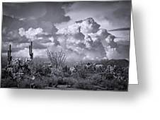 Chasing Clouds Again In Black And White  Greeting Card