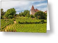 Chateau In A Vineyard Greeting Card