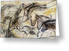 Chauvet Horses Aurochs And Rhinoceros Greeting Card