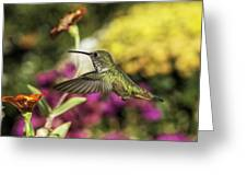 Check Out That Zinnia Greeting Card