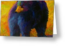 Checking The Smorg - Black Bear Greeting Card