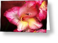 Cheerful Heart Greeting Card