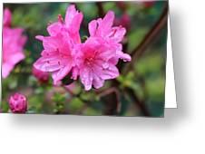 Cheerful Rain Greeting Card