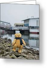 Cheerful Teddy Bear In Knitted Scarf Stand By The Riverside Beside The Port Greeting Card