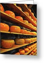Cheese In Holland Greeting Card