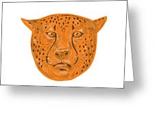Cheetah Head Drawing Greeting Card