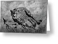 Cheetah Hunting Deer  Greeting Card