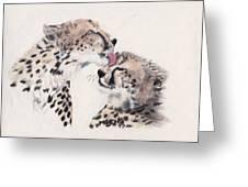 Cheetah Love Greeting Card by Marqueta Graham