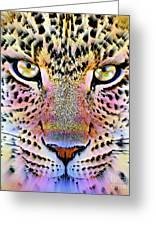 Cheetah Vi Greeting Card