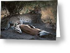 Cheetah With Kill Greeting Card