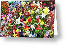 Chelsea Flower Show Greeting Card