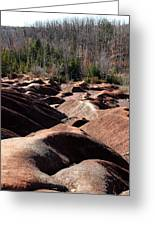 Cheltenham Badlands Greeting Card