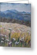 Cherokee Wildflowers Greeting Card