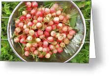 Cherries 8 Greeting Card