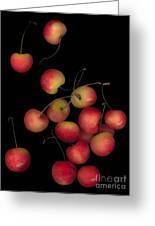 Cherries Multiplied Greeting Card
