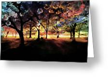 Cherry Blossom At Night Greeting Card