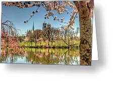 Cherry Blossom Branch Brook Park, Newark, Nj  Greeting Card