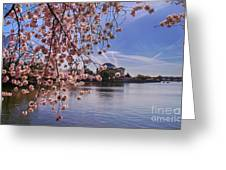 Cherry Blossom Over Tidal Basin Greeting Card