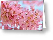 Cherry Blossom Pastel Greeting Card